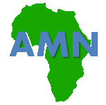 African Mobile Networks